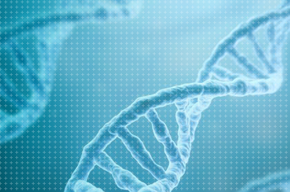 Gene editing case study